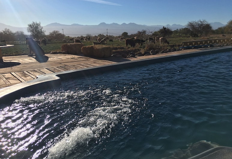 Atacama Loft & Glamp, San Pedro de Atacama, Outdoor Pool