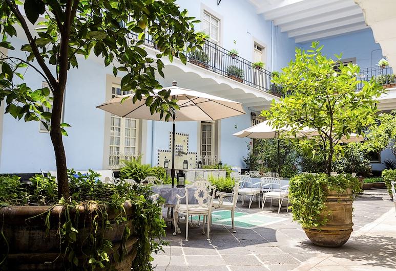 卡薩聖方索酒店, 墨西哥城, 庭園