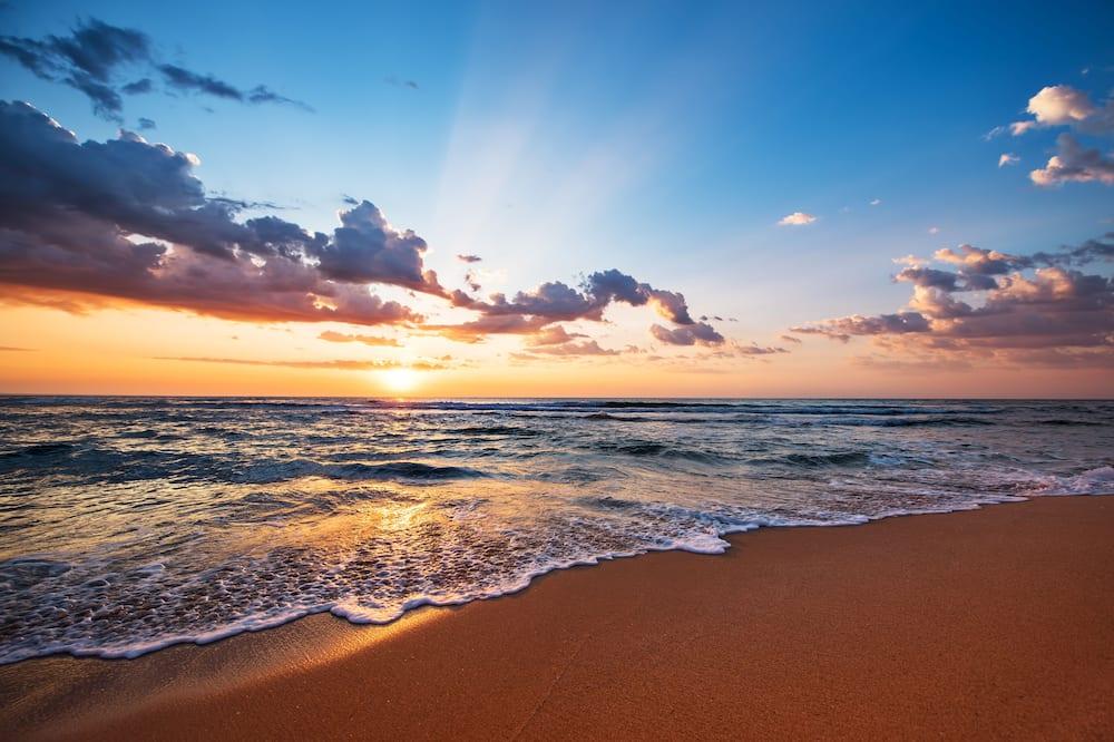 Carapace - Vaade rannale/ookeanile