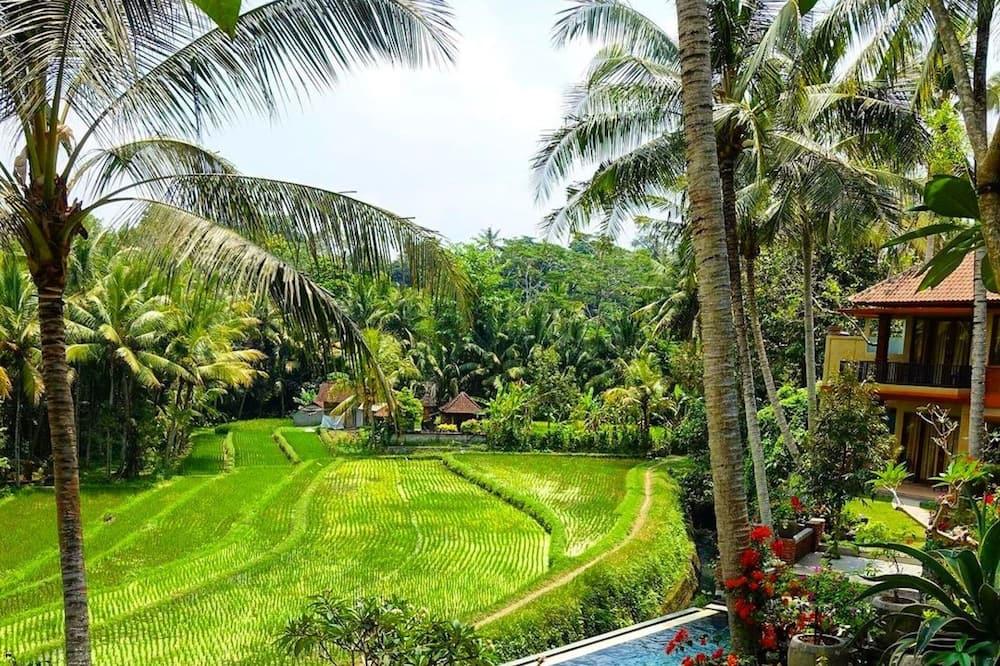 Umasari Rice Terrace Villa, Mengwi