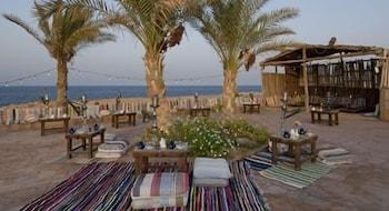Gambar Dreams Beach Marsa Alam di El Quseir