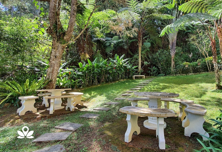 Arundina Cameron Highlands, Tanah Rata, Garden
