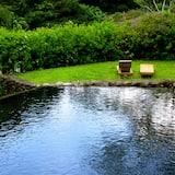 Luonnonallas