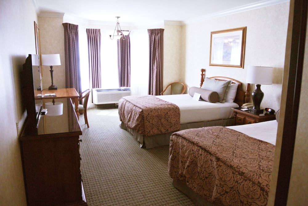 Cow Hollow Inn San Francisco Room 2 Double Beds Guest