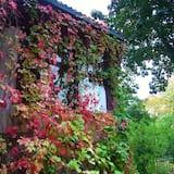 Suite - Garden View