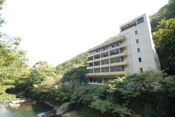 箱根塔之澤世嘉濤灣酒店的圖片