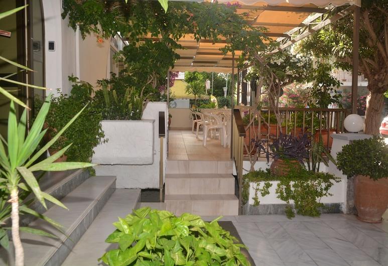 Paradise Hotel, Kosas, Viešbučio teritorija