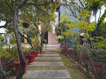 在圣克里斯多堡德拉斯卡萨斯的光之花园首都 O 酒店照片