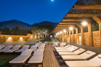 Bild vom Indigo Inn Hotel in Chersonissos