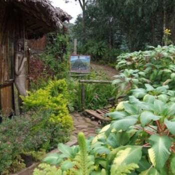 Image de Mount Kilimanjaro View Lodge à Moshi