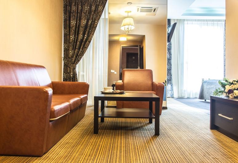 Diplomat Hotel, Nižnij Novgorodas, Numeris, Svečių kambarys