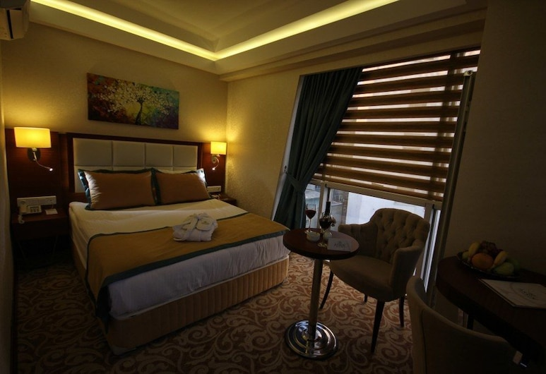 Asrın Business Hotel, אנקרה, חדר אורחים
