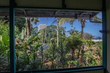 ภาพ โรงแรมไวลด์จินเจอร์ ใน ฮิโล