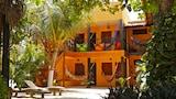 傑里科科拉酒店,傑里科科拉住宿,線上預約 傑里科科拉酒店