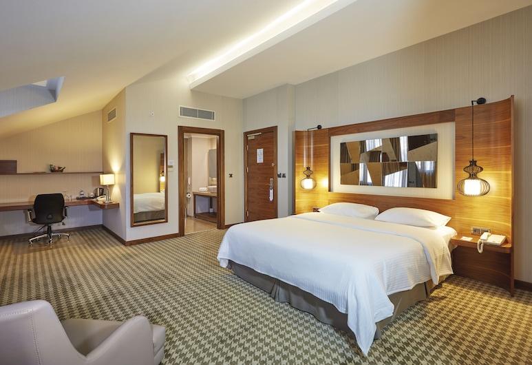 Anemon Ankara, Ankara, Deluxe Room, Guest Room