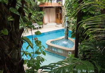 在坎昆(及周边地区)的加勒比国王生态酒店照片