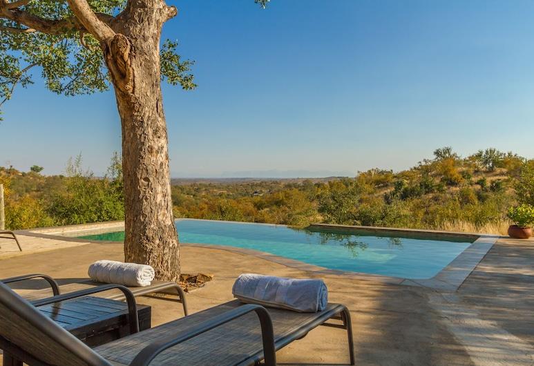"""Mbizi Bush Lodge, Phalaborwa, """"Begalinis"""" baseinas"""