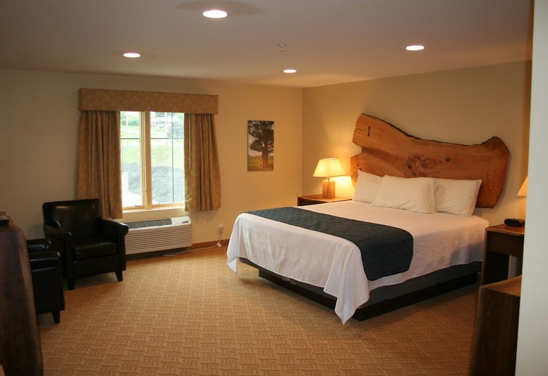 Hotel Floyd, Floyd, prabangus kambarys, Svečių kambarys